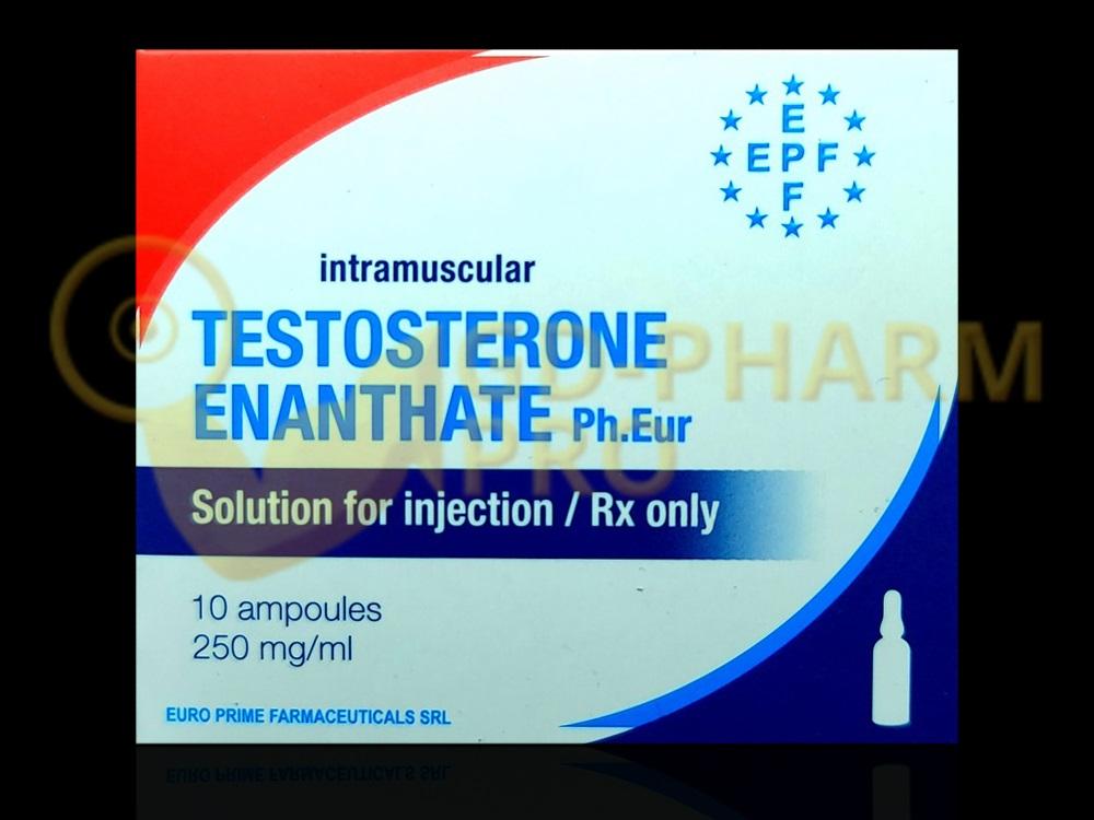 Testosterone Enanthate EPF 1ml
